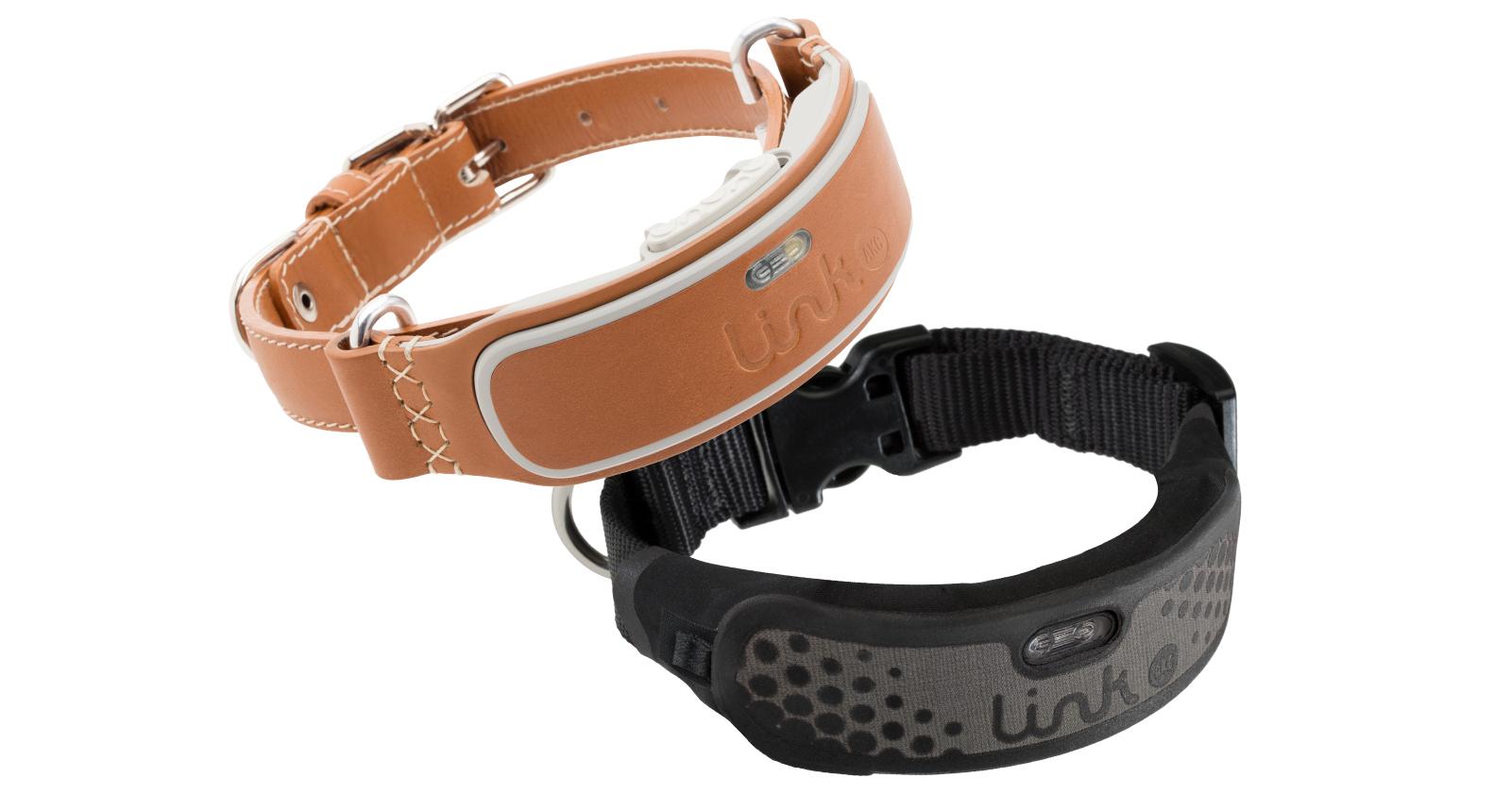 Link AKC GPS Smart Collar